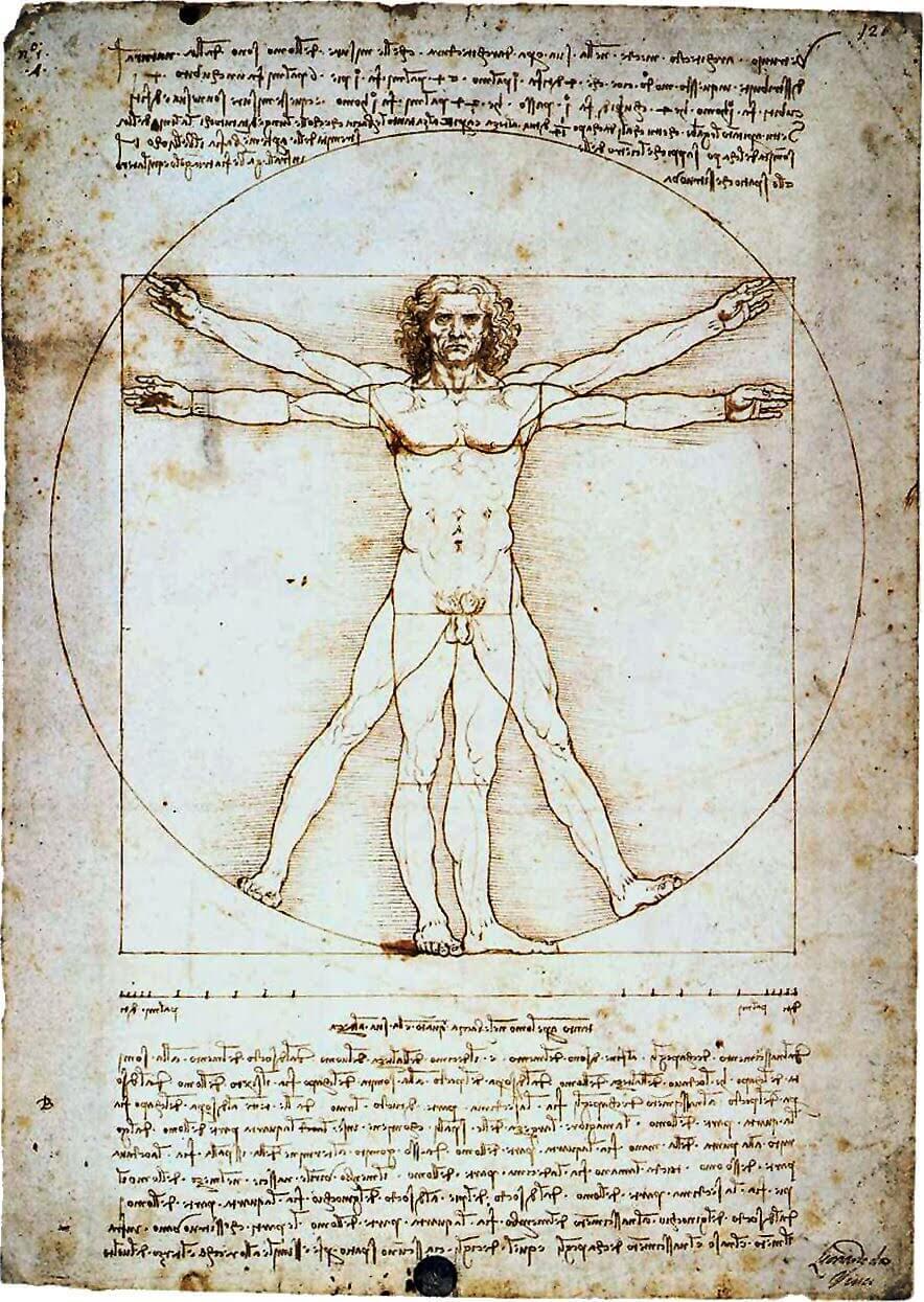 da-Vinci-Vitriuvian-Man