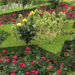 Alhambra Garden Motif